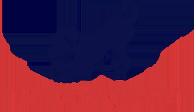 Downward Dog Canine Transformation